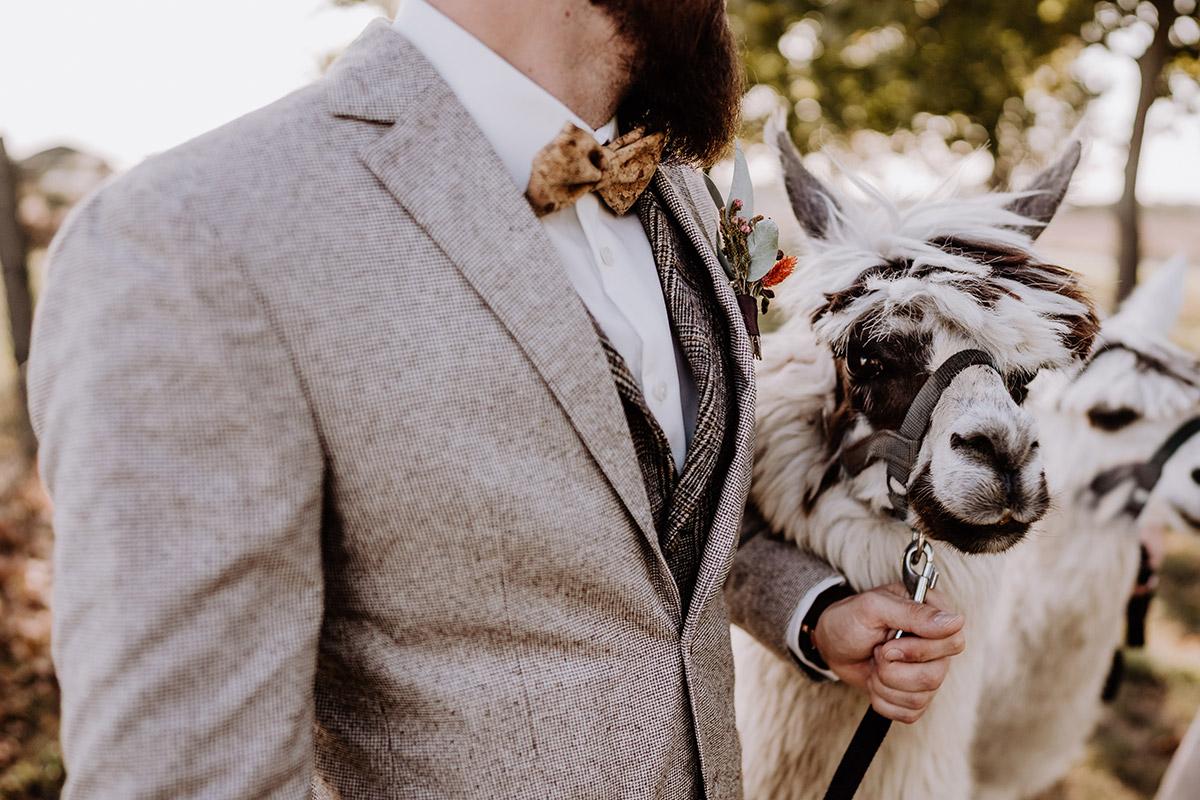 Inspiration Hochzeit Boho mit Alpaka - Hochzeitsfotografin aus Berlin fotografiert After Wedding Shooting mit Alpakas in Brandenburg © Hochzeitsfotograf Berlin www.hochzeitslicht.dee