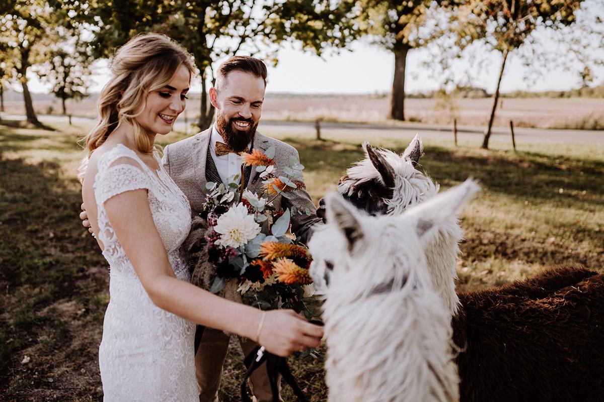 Idee After Wedding Fotoshooting Herbsthochzeit - Hochzeitsfotografin aus Berlin fotografiert After Wedding Shooting mit Alpakas in Brandenburg © Hochzeitsfotograf Berlin www.hochzeitslicht.de