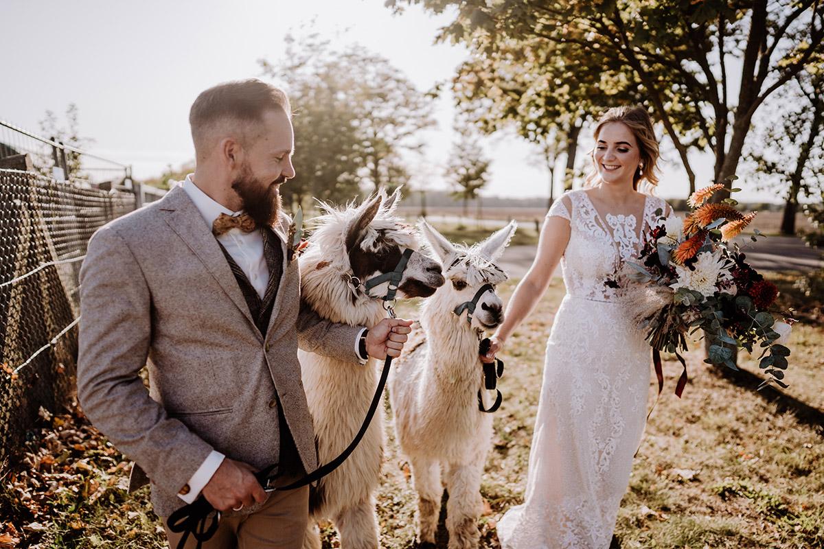 Idee Hochzeitsoutfits Vintage Hochzeit - Hochzeitsfotografin aus Berlin fotografiert After Wedding Shooting mit Alpakas in Brandenburg © Hochzeitsfotograf Berlin www.hochzeitslicht.de