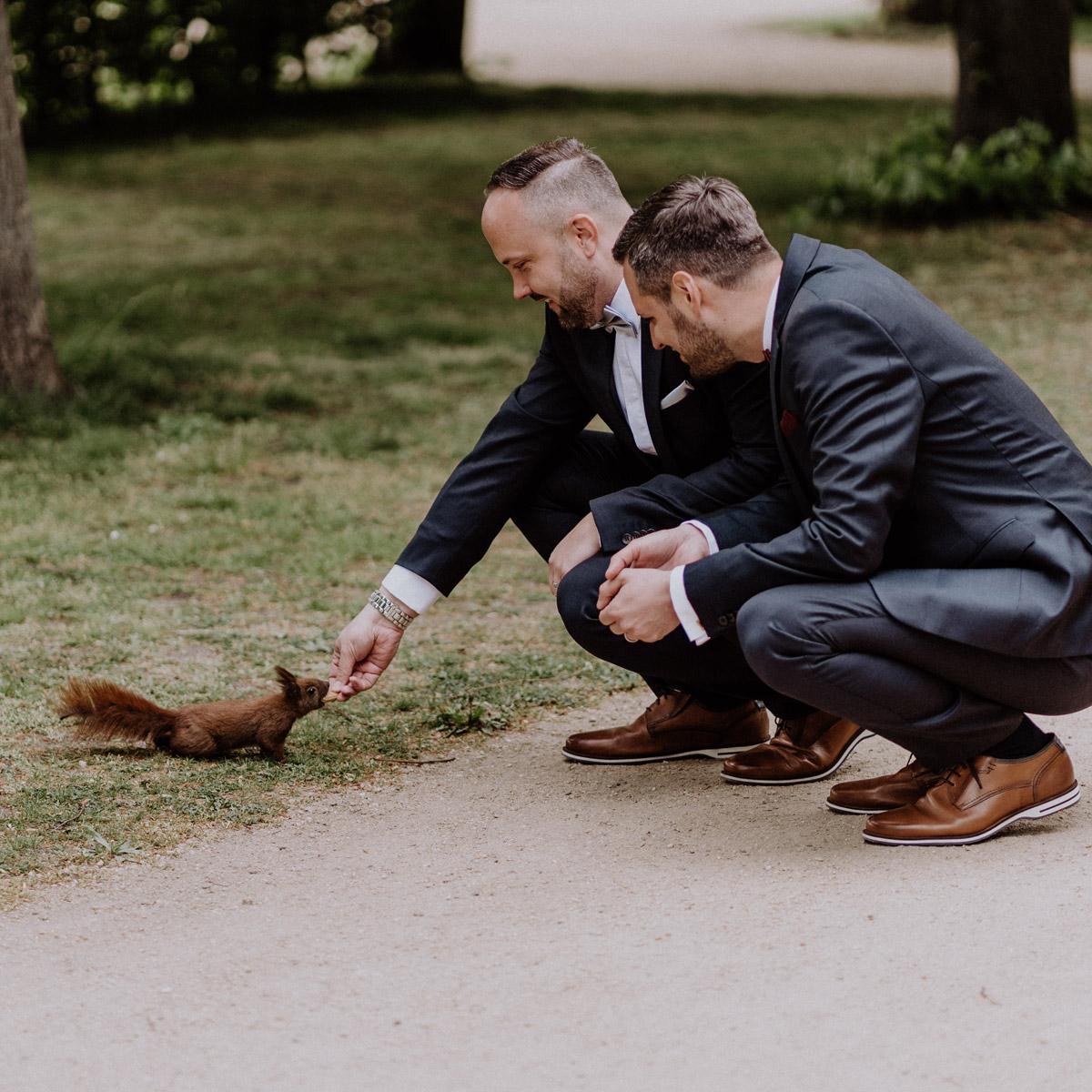 Hochzeit Fotos Idee lustig: Eichhörnchen lässt sich von Bräutigam füttern auf homo Hochzeit Männer; Fotoshooting #gleichgeschlechtlich nach Standesamt Villa Kogge in Natur in Park; Ideen für urbane schwule Hochzeitsfotos von #hochzeitslicht Hochzeitsfotograf Berlin © www.hochzeitslicht.de #gaywedding #grooms #samesex #homoehe #funny #gayweddingphoto #squirrel #wedding